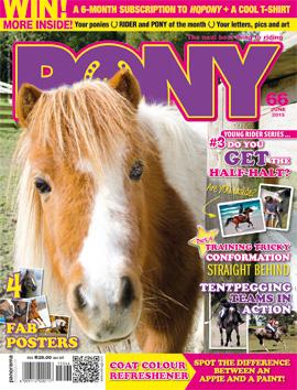 ft-pony